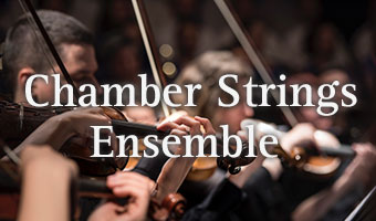 Chamber Strings Ensemble
